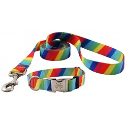 Rainbow Stripes Premium Collar & Leash