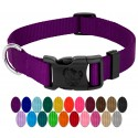 Purple Deluxe Nylon Dog Collars Swatch