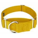 1 1/2 Inch Martingale Heavyduty Nylon Dog Collar - Gold