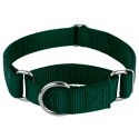 Green Martingale Heavyduty Nylon Dog Collar