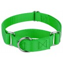 Hot Lime Green Martingale Heavyduty Nylon Dog Collar