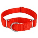 Hot Orange Martingale Heavyduty Nylon Dog Collar