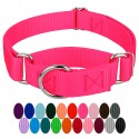 Hot Pink Martingale Heavyduty Nylon Dog Collar - Swatch