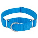 Ice Blue Martingale Heavyduty Nylon Dog Collar