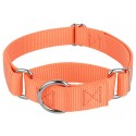 Mango Martingale Heavyduty Nylon Dog Collar