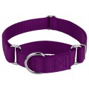 Purple Martingale Heavyduty Nylon Dog Collar