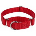Red Martingale Heavyduty Nylon Dog Collar