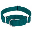 Teal Martingale Heavyduty Nylon Dog Collar