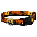Country Brook Petz® Deluxe All Hallow's Eve Dog Collar