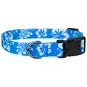 Deluxe Blue Hawaiian Dog Collar