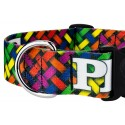 1 1/2 Inch Deluxe Pride and Peace Dog Collar - Up Close