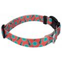 Deluxe Tropical Tango Dog Collar - Third Angle