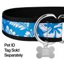 1 1/2 Inch Blue Hawaiian Exclusive Martingale Dog Collar - Closeup