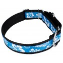 1 1/2 Inch Blue Hawaiian Exclusive Martingale Dog Collar - Third Angle