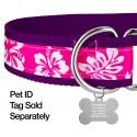1 1/2 Inch Pink Hawaiian Exclusive Martingale Dog Collar - Closeup