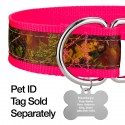 1 1/2 Inch Southern Forest Camo Exclusive Martingale Dog Collar - Closeup