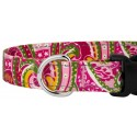 Deluxe Pink Paisley Reflective Dog Collar - Closeup