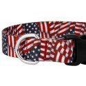 Country Brook Design® Patriotic Tribute Deluxe Collar & Leash - Closeup