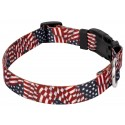 Country Brook Design® Patriotic Tribute Deluxe Collar & Leash - Third Angle