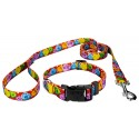 Red Valentine's Candy Deluxe Dog Collar & Leash