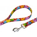 Red Valentine's Candy Deluxe Dog Collar & Leash  5th View