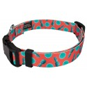 Tropical Tango Deluxe Dog Collar & Leash - Secondary Angle
