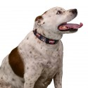 1 1/2 Inch I Love Mom Martingale Dog Collar - In Use View