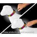 Paint Splatter Dog Leash - In Use