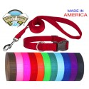 Deluxe Nylon Dog Collar and Leash-Assorted Colors