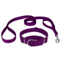 Purple Martingale Heavyduty Nylon Dog Collar and Double Handle Leash
