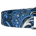 Blue Paisley Martingale Dog Collar & Leash - Closeup