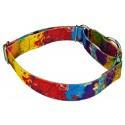 Paint Splatter Martingale Dog Collar & Leash - Third Angle